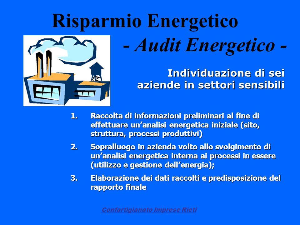 Confartigianato Imprese Rieti Risparmio Energetico - Audit Energetico - Individuazione di sei aziende in settori sensibili 1.Raccolta di informazioni