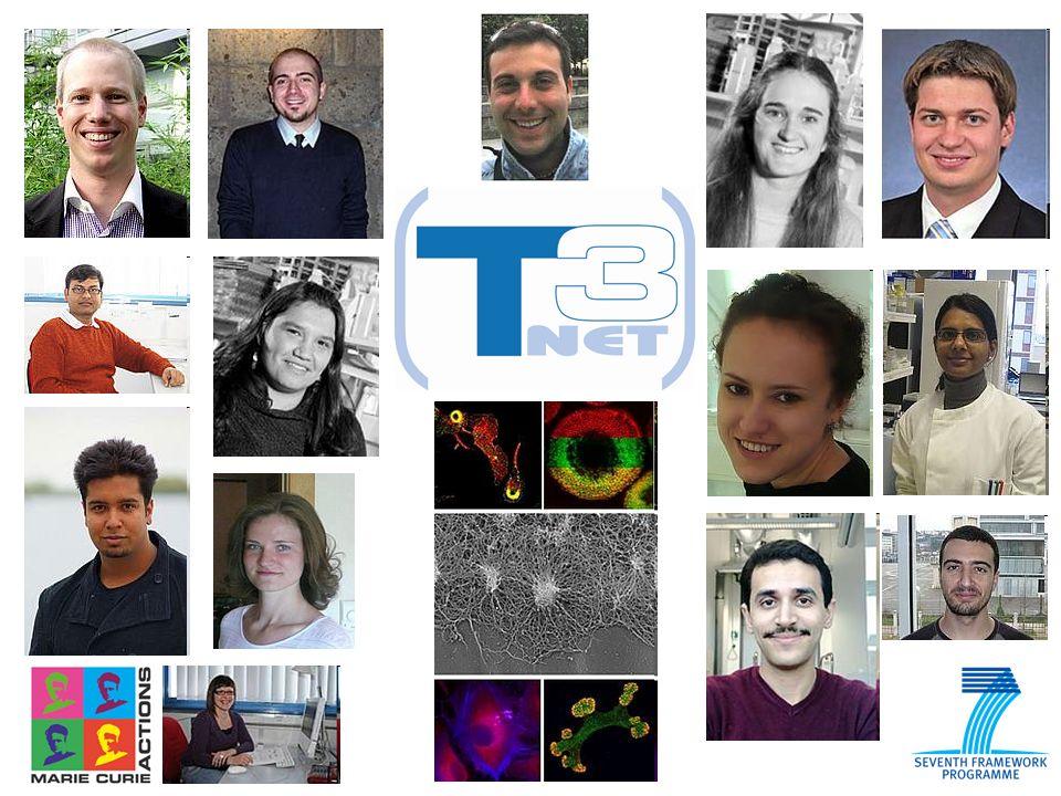 Professori e supervisori del T3Net Prof.Dr. Roberto Buccione ( Chieti, Italy ) Prof.
