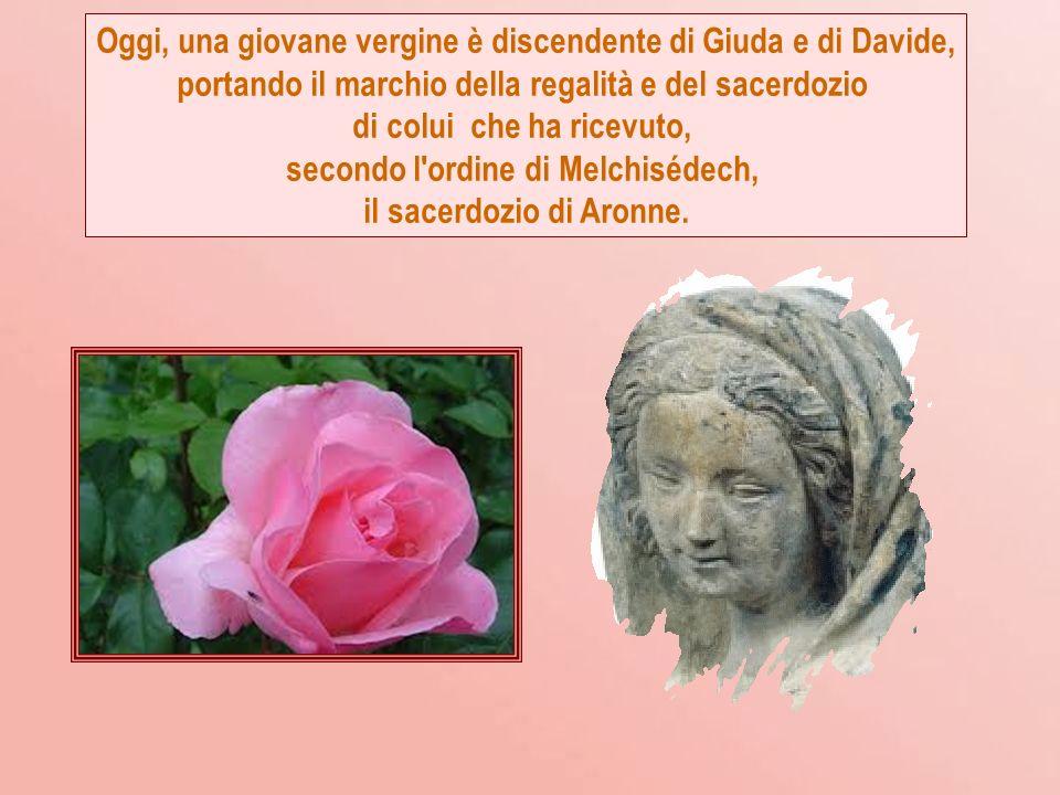 Oggi è apparso lo splendore della porpora divina, oggi la miserevole natura umana ha rivestito la dignità reale.