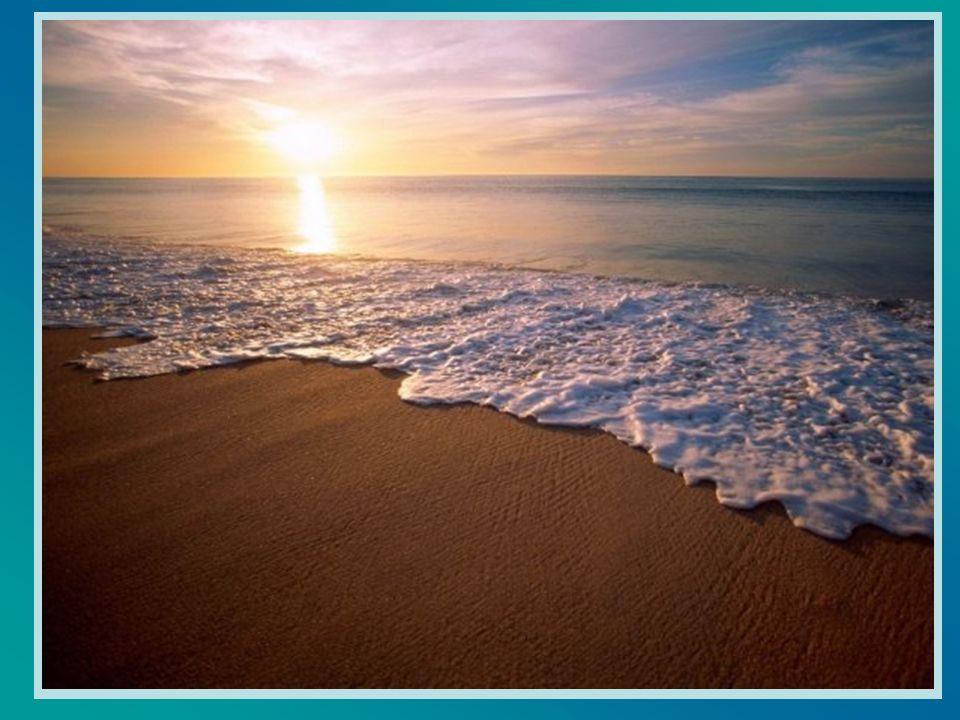 Dandosi saggiamente la mano, scivolavano senza rumore e si stendevano in tutta la loro lunghezza sulla sabbia, per raggiungere la riva, con lestremità