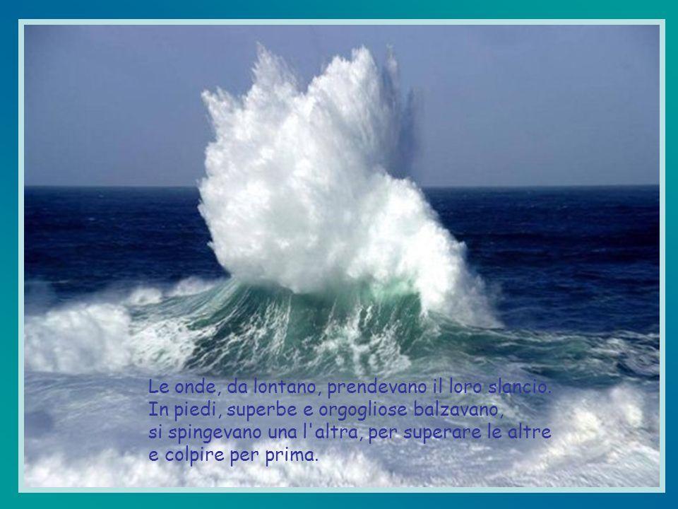 Le onde, da lontano, prendevano il loro slancio.