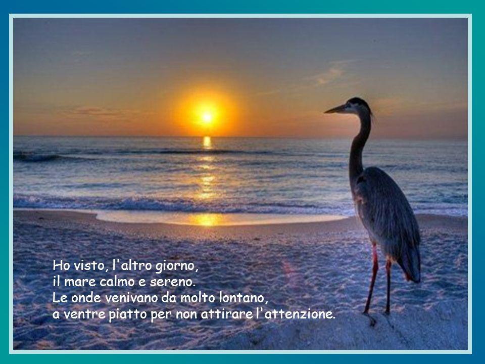 Al contrario, Signore, fa che con calma riempia le mie giornate, come il mare ricopre lentamente tutta la sabbia.