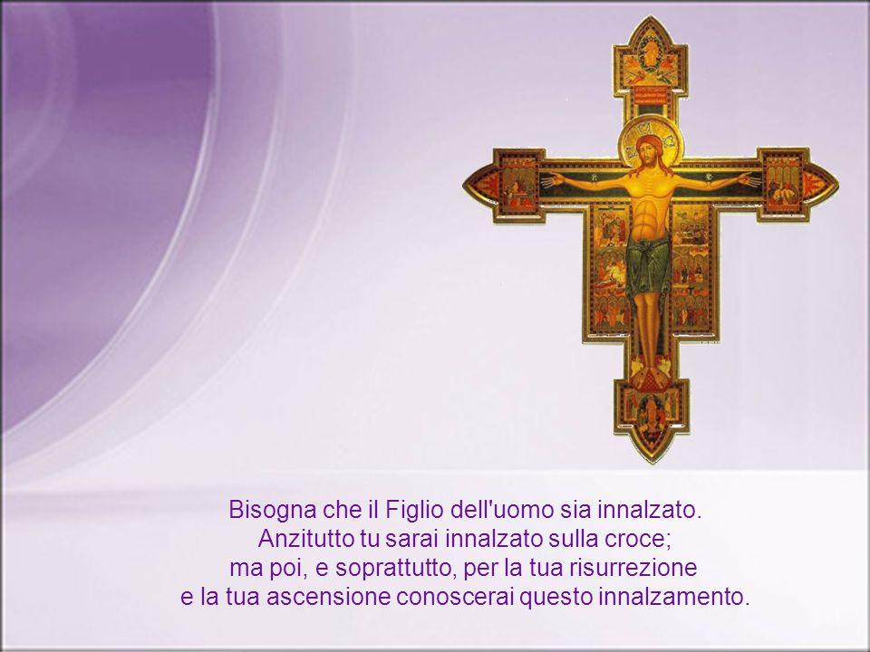 Nel Vangelo Gesù c'invita a scegliere la luce. E nella seconda lettura, san Paolo riafferma ancora la forza della fede : è per la grazia di Dio che si