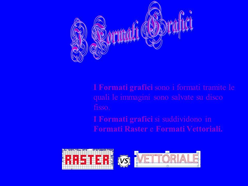 I Formati grafici sono i formati tramite le quali le immagini sono salvate su disco fisso. I Formati grafici si suddividono in Formati Raster e Format