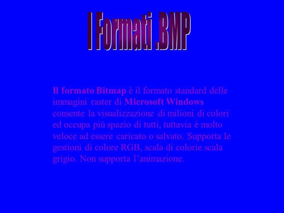 Il formato Bitmap è il formato standard delle immagini raster di Microsoft Windows consente la visualizzazione di milioni di colori ed occupa più spaz