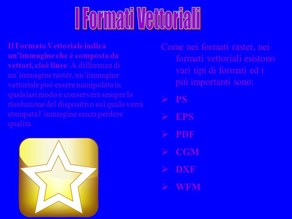 Il Formato Vettoriale indica unimmagine che è composta da vettori, cioè linee. A differenza di unimmagine raster, unimmagine vettoriale può essere man