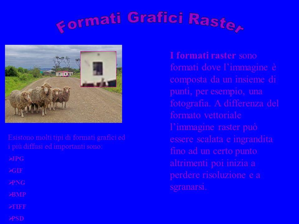 Proprietà delle immagini raster Ogni immagine di tipo raster è caratterizzata da 3 aspetti fondamentali: Risoluzione Profondità colore Tipo di Compressione