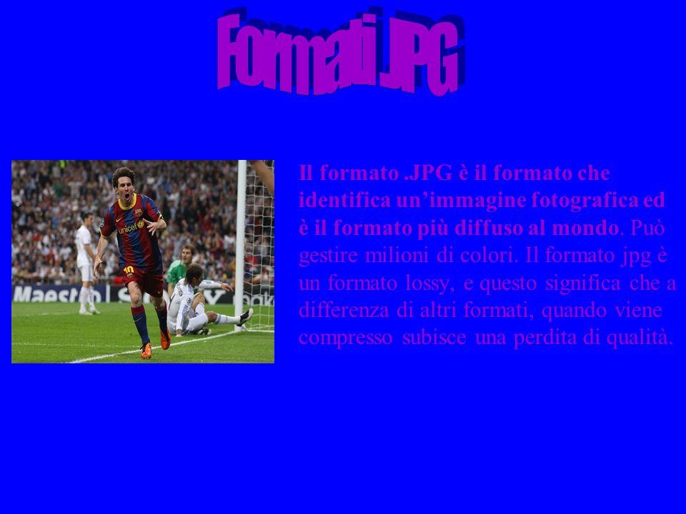 Il formato.GIF è il formato più utilizzato insieme al formato jpg e al png.