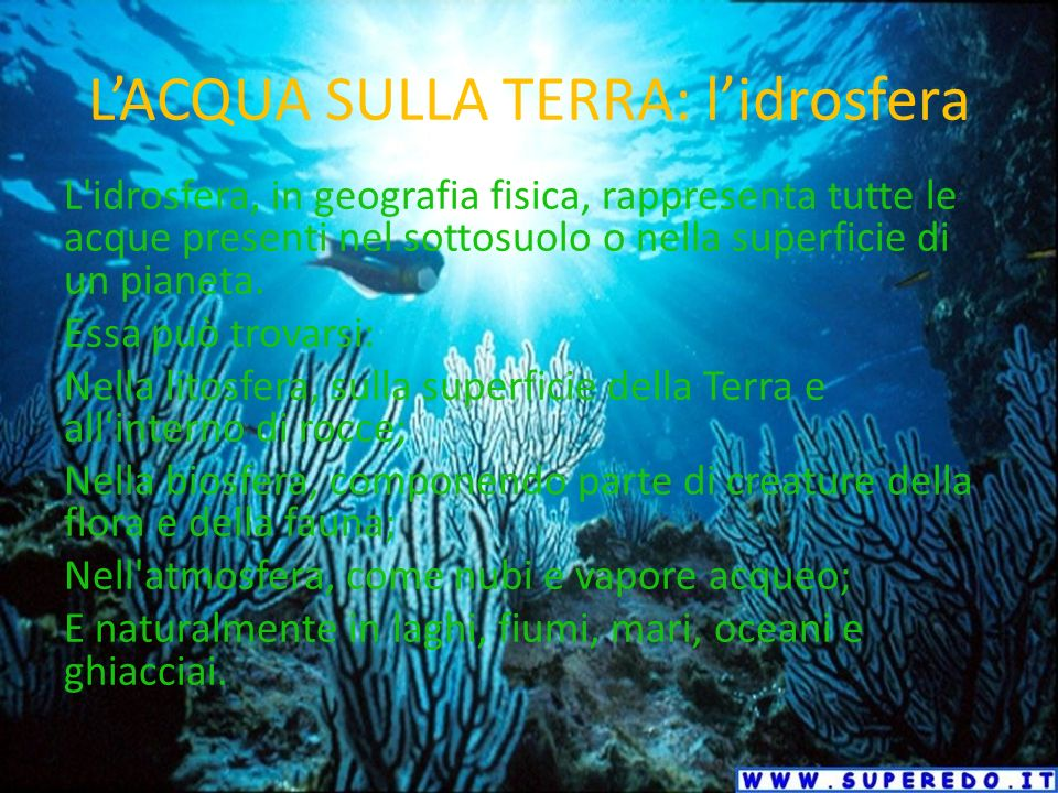 LACQUA SULLA TERRA: lidrosfera L idrosfera, in geografia fisica, rappresenta tutte le acque presenti nel sottosuolo o nella superficie di un pianeta.