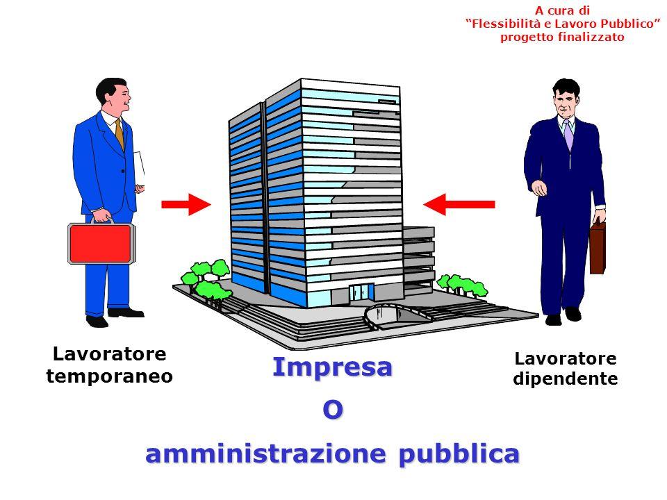Presidenza del Consiglio dei Ministri Dipartimento della Funzione Pubblica Progetto finalizzato Flessibilità e Lavoro Pubblico IL LAVORO TEMPORANEO