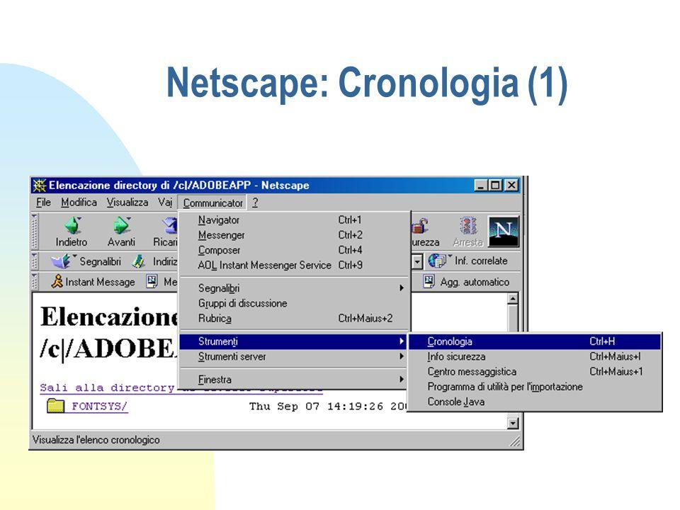 Netscape: Cronologia (1)