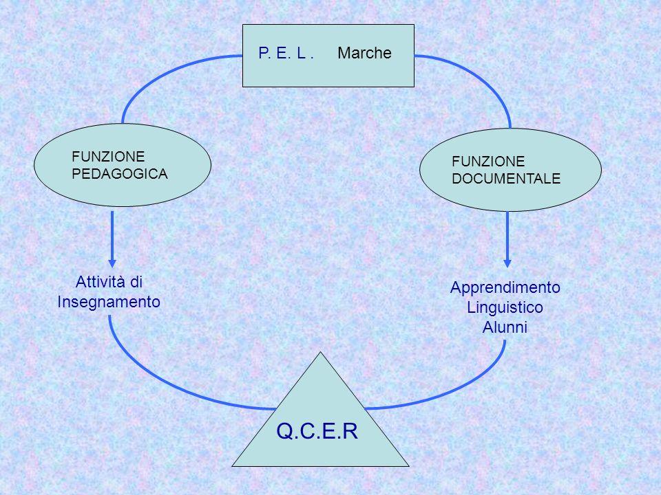 P. E. L. Marche FUNZIONE PEDAGOGICA FUNZIONE DOCUMENTALE Attività di Insegnamento Apprendimento Linguistico Alunni Q.C.E.R