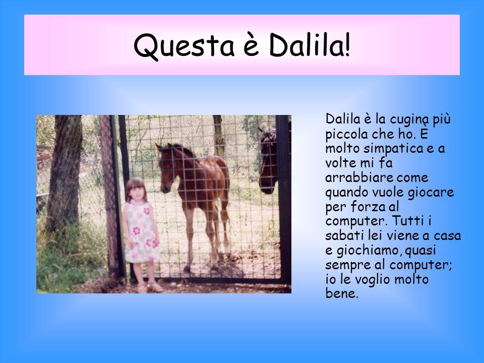 Questa è Dalila.Dalila è la cugina più piccola che ho.