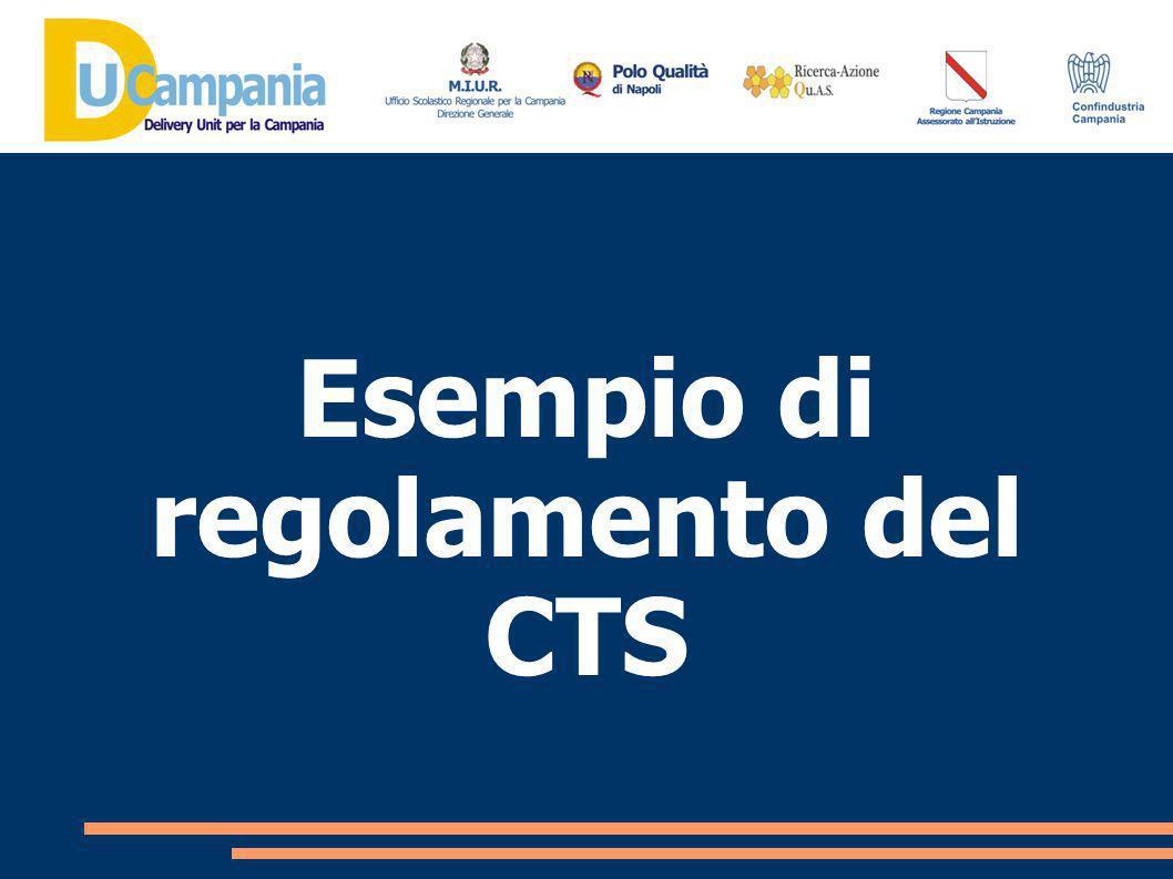 Il CTS esercita una funzione consultiva generale in ordine allattività di programmazione e all innovazione dell Offerta Formativa dellIstituto.