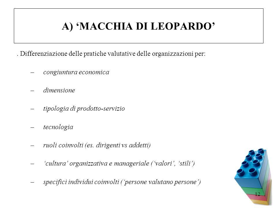 12 A) MACCHIA DI LEOPARDO. Differenziazione delle pratiche valutative delle organizzazioni per: –congiuntura economica –dimensione –tipologia di prodo