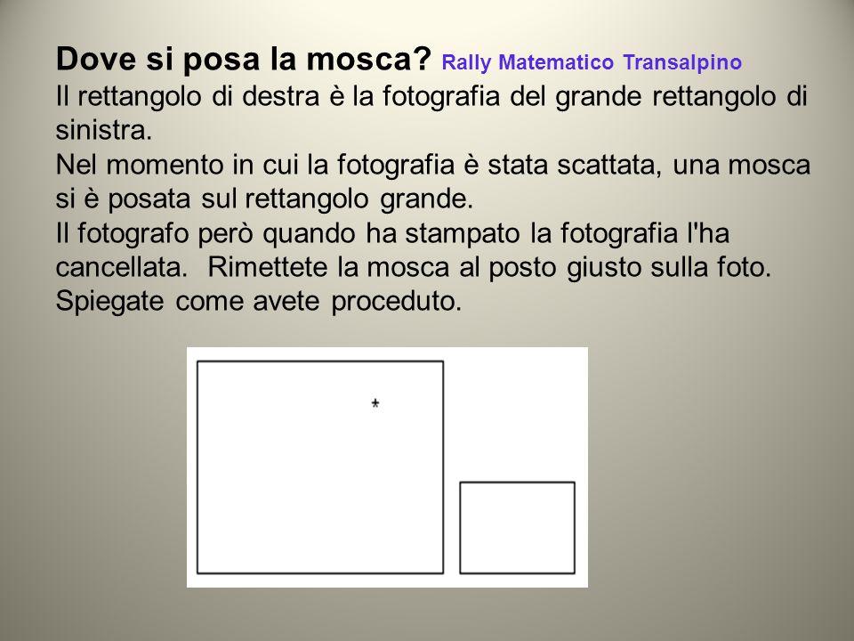 Dove si posa la mosca? Rally Matematico Transalpino Il rettangolo di destra è la fotografia del grande rettangolo di sinistra. Nel momento in cui la f