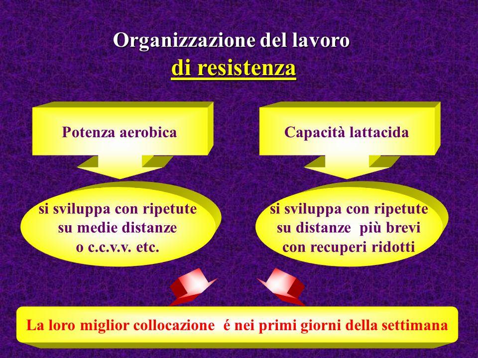 Organizzazione del lavoro di resistenza Potenza aerobicaCapacità lattacida si sviluppa con ripetute su medie distanze o c.c.v.v. etc. si sviluppa con