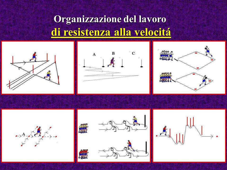 Organizzazione del lavoro di velocitá e rapidità Risposta rapida a stimoli visivi Altri mezzi sono: Risposta rapida a stimoli acustici