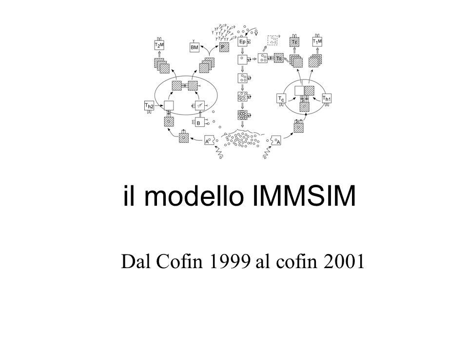 il modello IMMSIM Dal Cofin 1999 al cofin 2001