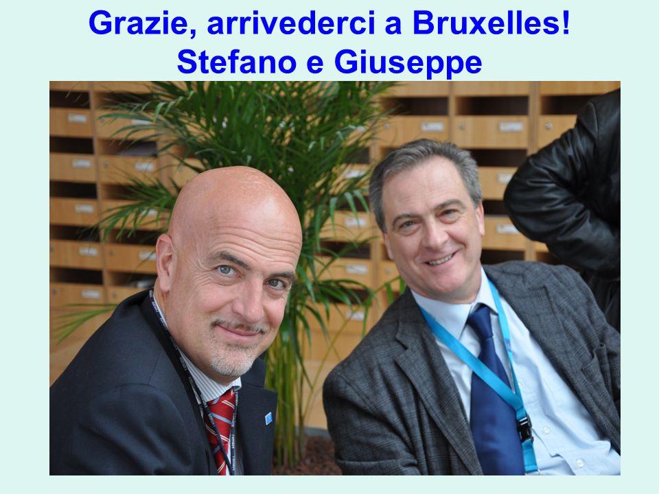Grazie, arrivederci a Bruxelles! Stefano e Giuseppe