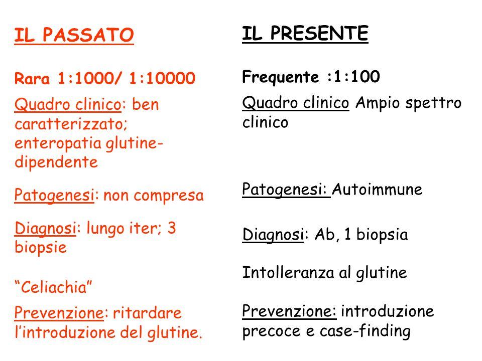 IL PRESENTE Frequente :1:100 Quadro clinico Ampio spettro clinico Patogenesi: Autoimmune Diagnosi: Ab, 1 biopsia Intolleranza al glutine Prevenzione: introduzione precoce e case-finding IL PASSATO Rara 1:1000/ 1:10000 Quadro clinico: ben caratterizzato; enteropatia glutine- dipendente Patogenesi: non compresa Diagnosi: lungo iter; 3 biopsie Celiachia Prevenzione: ritardare lintroduzione del glutine.