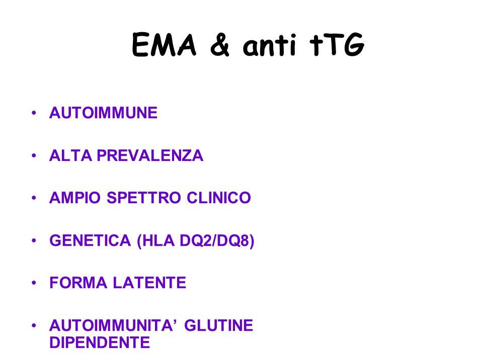EMA & anti tTG AUTOIMMUNE ALTA PREVALENZA AMPIO SPETTRO CLINICO GENETICA (HLA DQ2/DQ8) FORMA LATENTE AUTOIMMUNITA GLUTINE DIPENDENTE