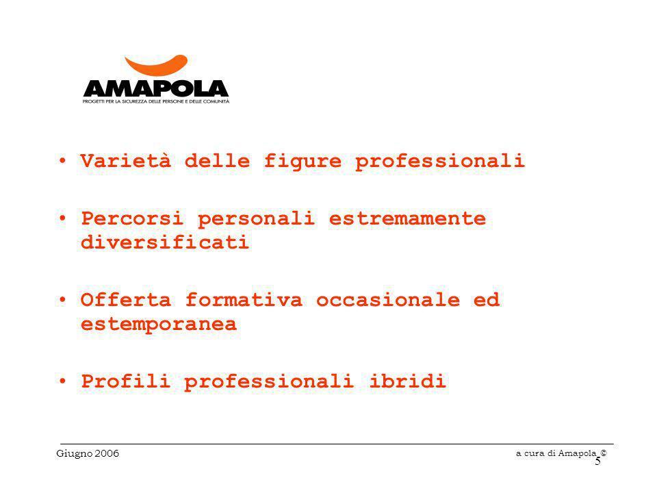 5 Varietà delle figure professionali Percorsi personali estremamente diversificati Offerta formativa occasionale ed estemporanea Profili professionali ibridi Giugno 2006 a cura di Amapola ©