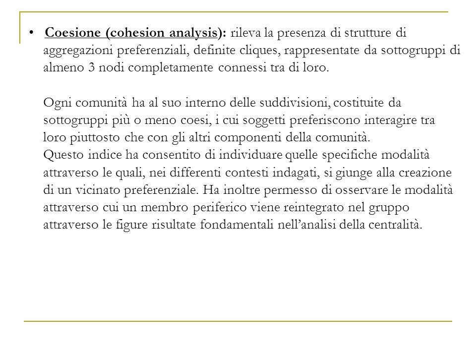 Coesione (cohesion analysis): rileva la presenza di strutture di aggregazioni preferenziali, definite cliques, rappresentate da sottogruppi di almeno