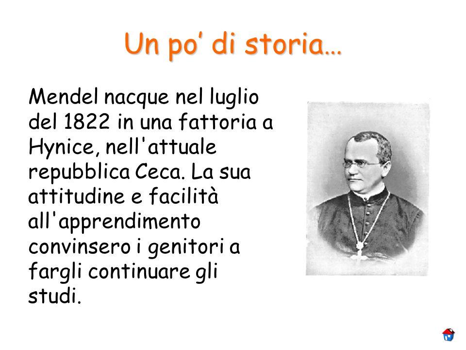 Un po di storia… Mendel nacque nel luglio del 1822 in una fattoria a Hynice, nell'attuale repubblica Ceca. La sua attitudine e facilità all'apprendime