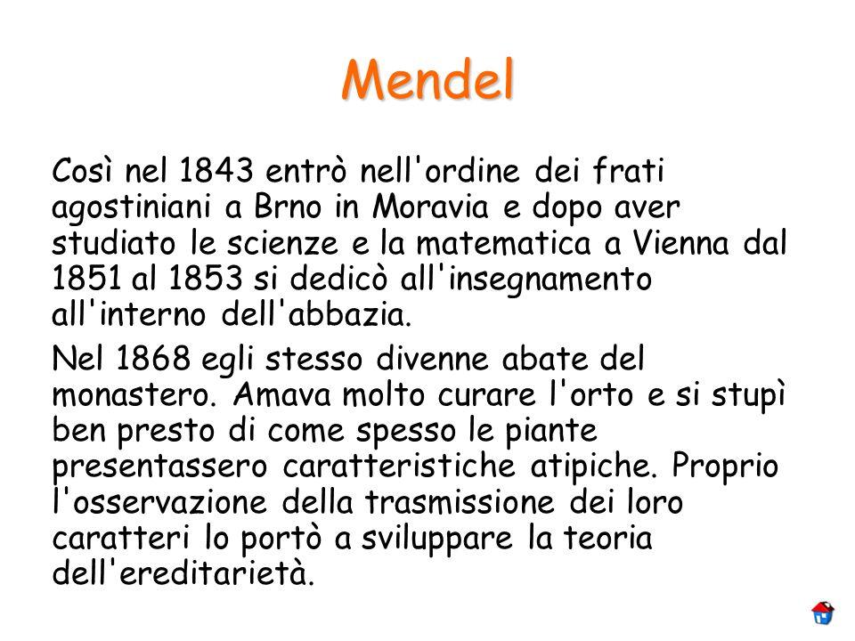 Mendel Così nel 1843 entrò nell'ordine dei frati agostiniani a Brno in Moravia e dopo aver studiato le scienze e la matematica a Vienna dal 1851 al 18