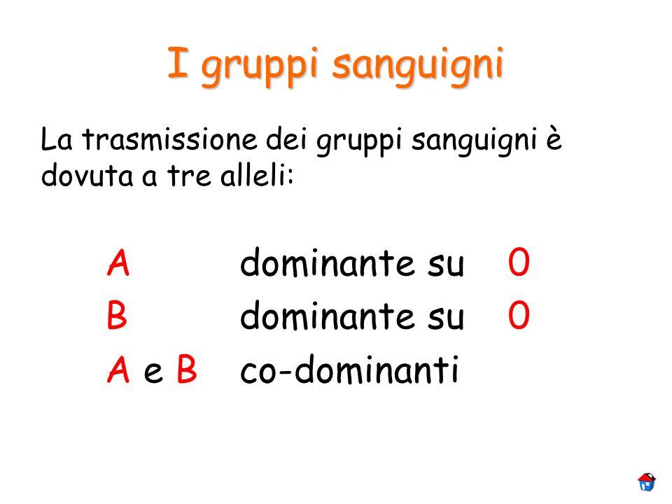 I gruppi sanguigni La trasmissione dei gruppi sanguigni è dovuta a tre alleli: Adominante su0 Bdominante su0 A e Bco-dominanti