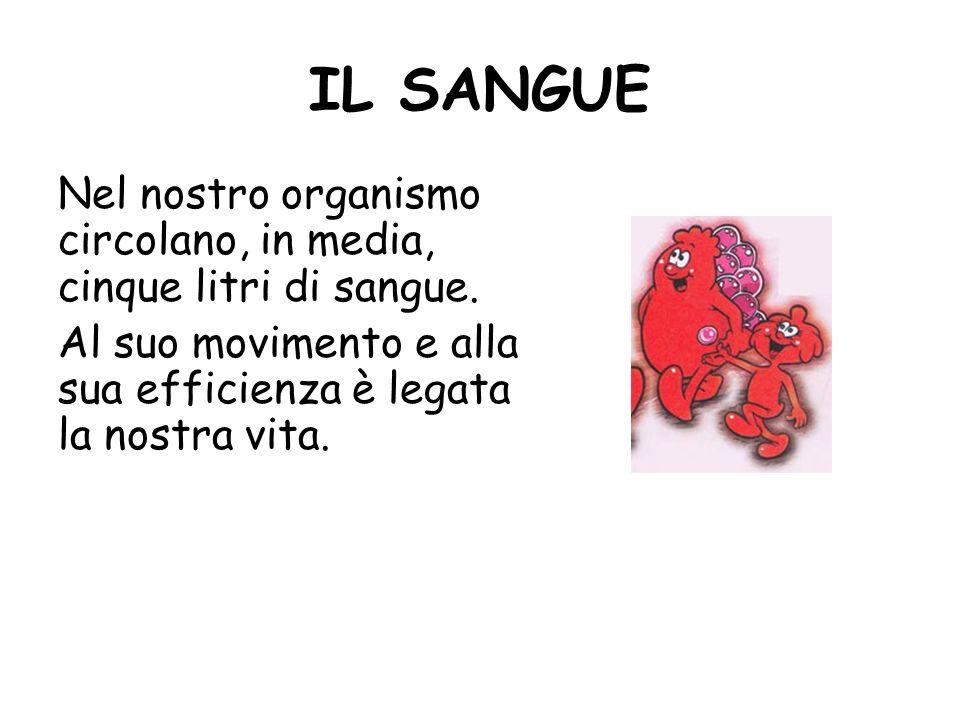Il Prof. Carrano Presenta Il sangue