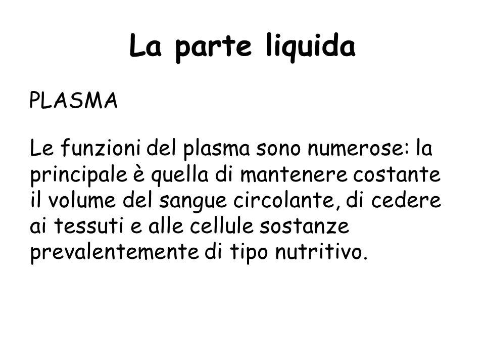 La parte liquida PLASMA Nel plasma sono presenti importanti elementi e complessi chimici: minerali (calcio, sodio, potassio, ferro, rame, fosforo, ecc