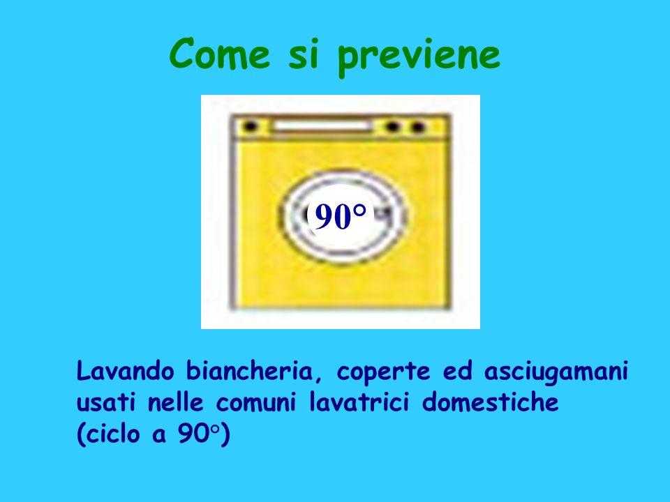 Lavando biancheria, coperte ed asciugamani usati nelle comuni lavatrici domestiche (ciclo a 90°) 90° Come si previene