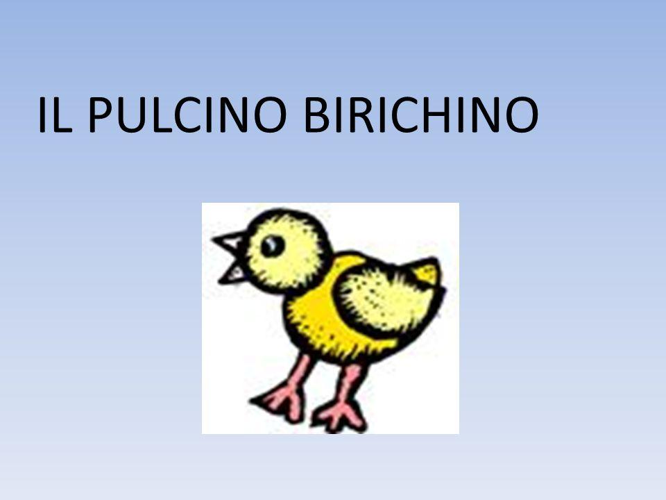IL PULCINO BIRICHINO