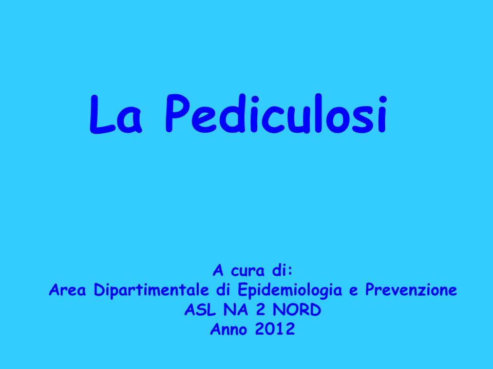 La Pediculosi A cura di: Area Dipartimentale di Epidemiologia e Prevenzione ASL NA 2 NORD Anno 2012