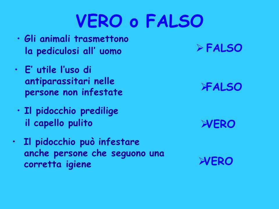 VERO o FALSO E utile luso di antiparassitari nelle persone non infestate FALSO Gli animali trasmettono la pediculosi all uomo Il pidocchio predilige i