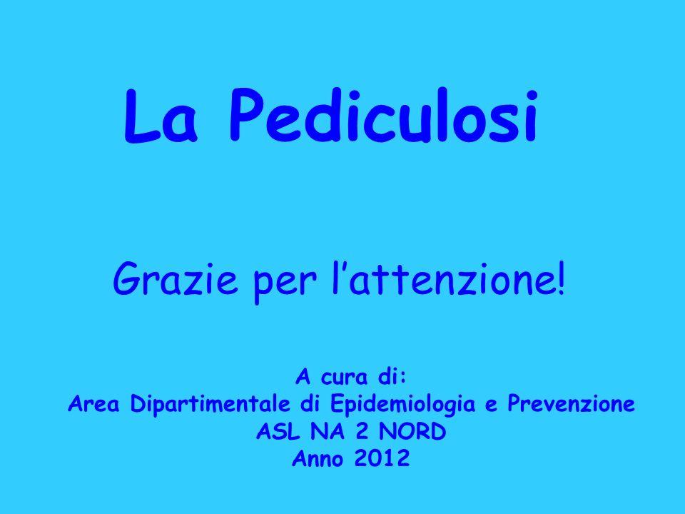 La Pediculosi A cura di: Area Dipartimentale di Epidemiologia e Prevenzione ASL NA 2 NORD Anno 2012 Grazie per lattenzione!
