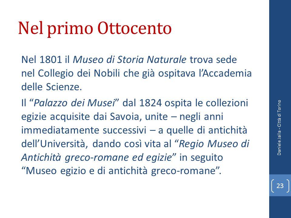 Nel primo Ottocento Nel 1801 il Museo di Storia Naturale trova sede nel Collegio dei Nobili che già ospitava lAccademia delle Scienze. Il Palazzo dei