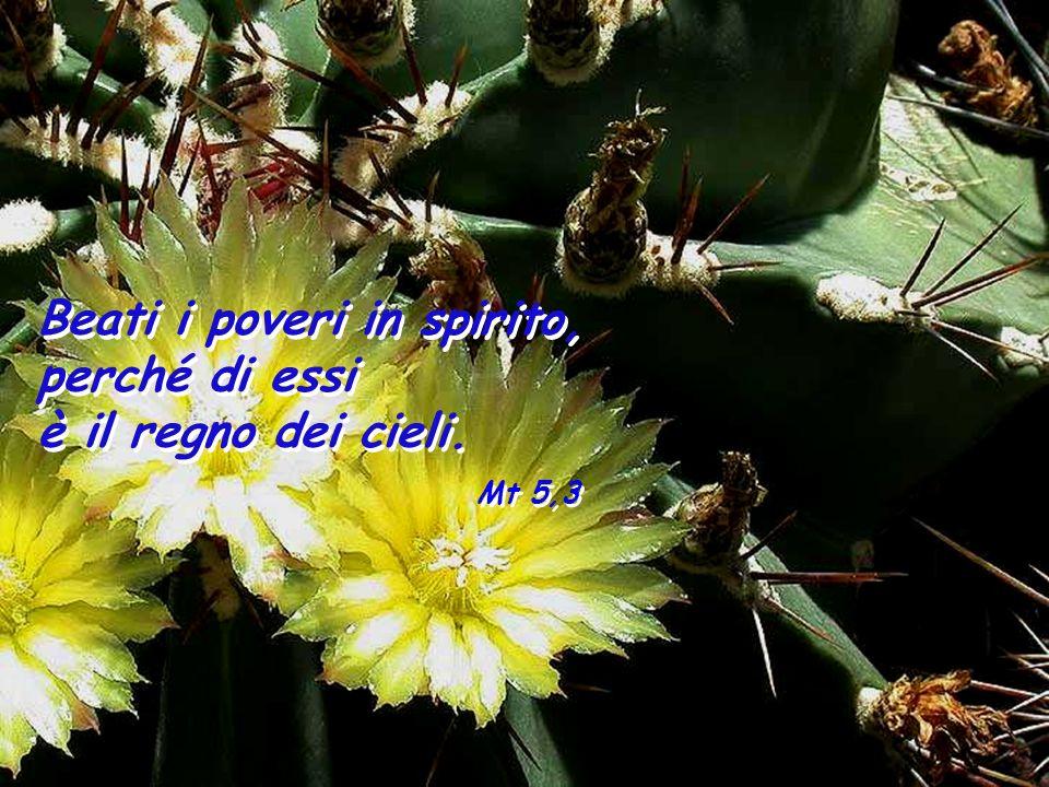 Eb 4,12-13 La parola di Dio è viva, efficace e più tagliente di ogni spada a doppio taglio; essa penetra fino al punto di divisione dellanima e dello