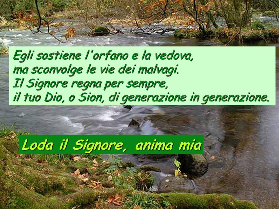 Loda il Signore, anima mia Il Signore ridona la vista ai ciechi, il Signore rialza chi è caduto, il Signore ama i giusti, il Signore protegge i forest
