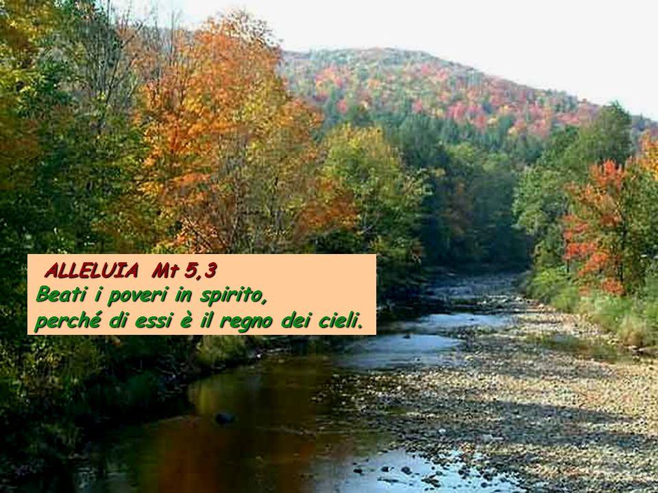 Eb 9,24-28 Cristo non è entrato in un santuario fatto da mani d'uomo, figura di quello vero, ma nel cielo stesso, per comparire ora al cospetto di Dio