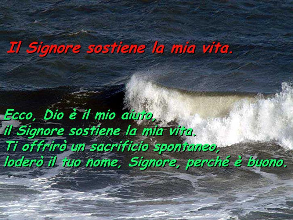 Il Signore sostiene la mia vita. Poiché stranieri contro di me sono insorti e prepotenti insidiano la mia vita; non pongono Dio davanti ai loro occhi.