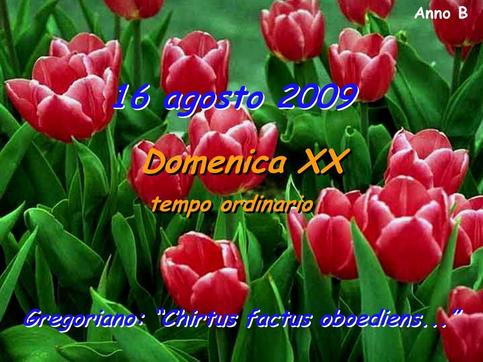 Anno B 16 agosto 2009 Domenica XX tempo ordinario Domenica XX tempo ordinario Gregoriano: Chirtus factus oboediens...