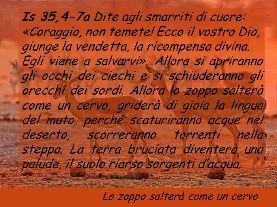 Anno B 6 settembre 2006 Domenica XXlll tempo ordinario Domenica XXlll tempo ordinario Musica: Canto bizantíino