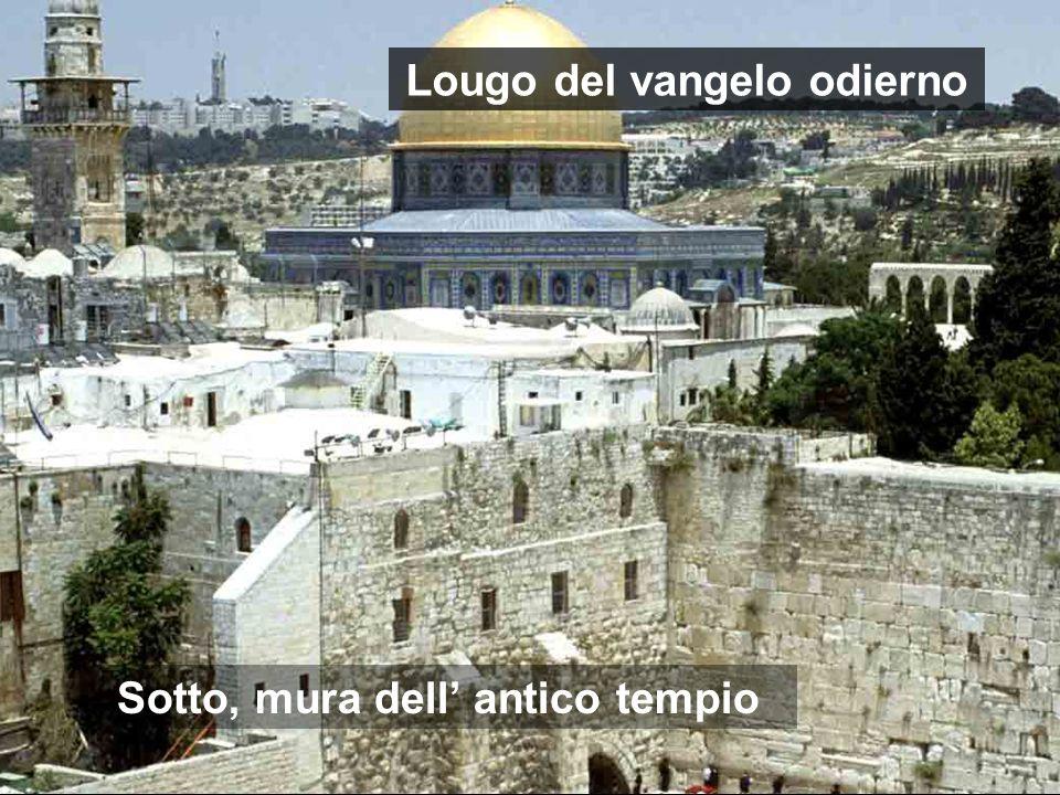 Ultimo soggiorno di Gesù in Gerusalemme Conclusione della sua dottrina: il valorizzare le cose dipende del cuore di ciascuno Al centro spianata del Te