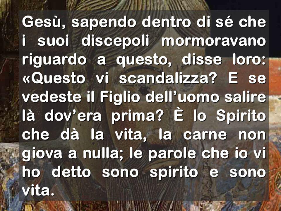 Gli rispose Simon Pietro: «Signore, da chi andremo.