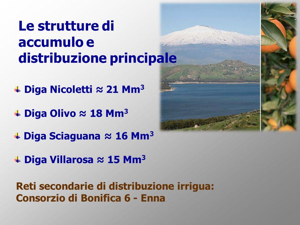 Le strutture di accumulo e distribuzione principale Reti secondarie di distribuzione irrigua: Consorzio di Bonifica 6 - Enna Diga Nicoletti 21 Mm 3 Diga Olivo 18 Mm 3 Diga Villarosa 15 Mm 3 Diga Sciaguana 16 Mm 3