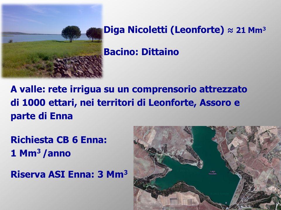 Diga Nicoletti (Leonforte) 21 Mm 3 Bacino: Dittaino A valle: rete irrigua su un comprensorio attrezzato di 1000 ettari, nei territori di Leonforte, Assoro e parte di Enna Richiesta CB 6 Enna: 1 Mm 3 /anno Riserva ASI Enna: 3 Mm 3