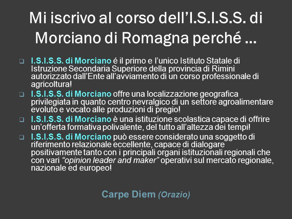 Mi iscrivo al corso dellI.S.I.S.S. di Morciano di Romagna perché … Carpe Diem (Orazio) I.S.I.S.S. di Morciano é il primo e lunico Istituto Statale di